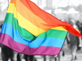Virtualus seminaras LGBT+ tema